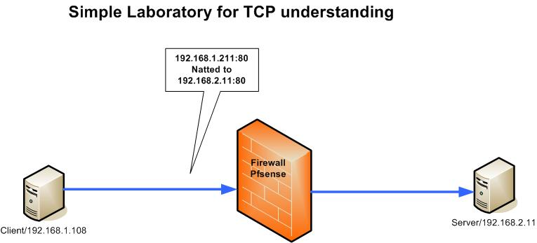 TCP UDP Article